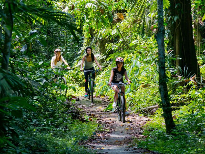 Cycling 5 - Mason Adventures (Bali Adventure Tours)