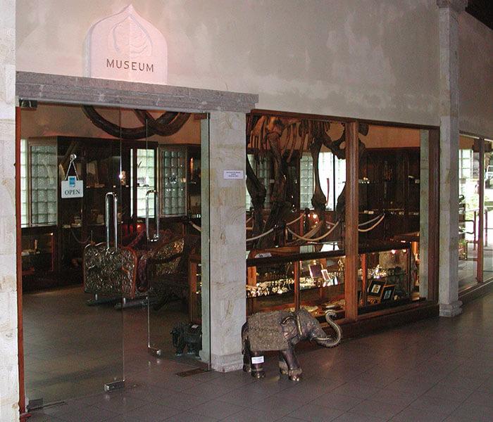 Elephant Museum 4 - Mason Adventures (Bali Adventure Tours)
