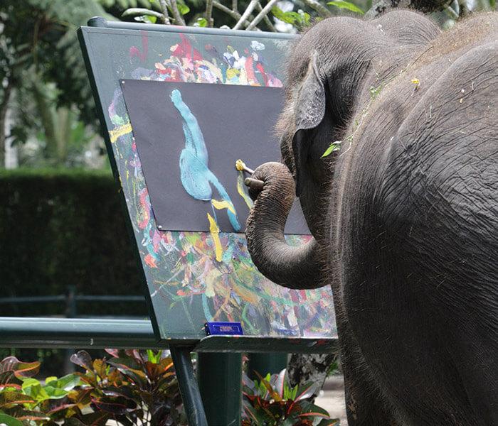 Elephant Painting 1 - Mason Adventures (Bali Adventure Tours)
