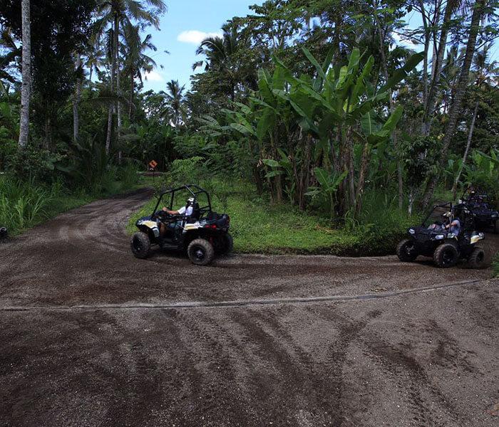 Jungle Buggies 13 - jungle buggies gallery - Mason Adventures (Bali Adventure Tours)