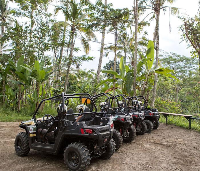 Jungle Buggies 16 - jungle buggies gallery - Mason Adventures (Bali Adventure Tours)