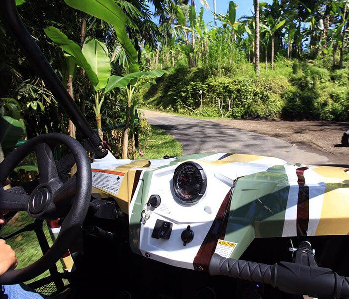 Jungle Buggies - jungle buggies gallery - Mason Adventures (Bali Adventure Tours)