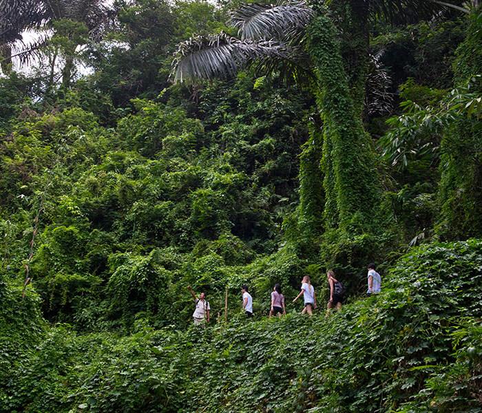 Tropical Trekking 2 - Cycling & Trekking Gallery - Mason Adventures (Bali Adventure Tours)