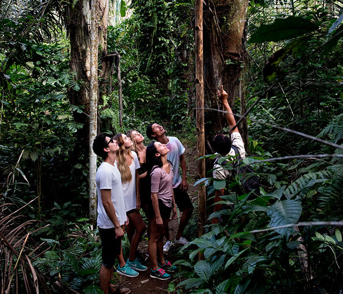Tropical Trekking 3 - Cycling & Trekking Gallery - Mason Adventures (Bali Adventure Tours)