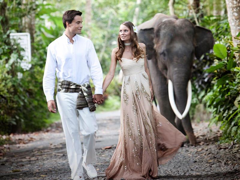 Wedding Event 1 - Bali wedding & special event - Mason Adventures (Bali Adventure Tours)