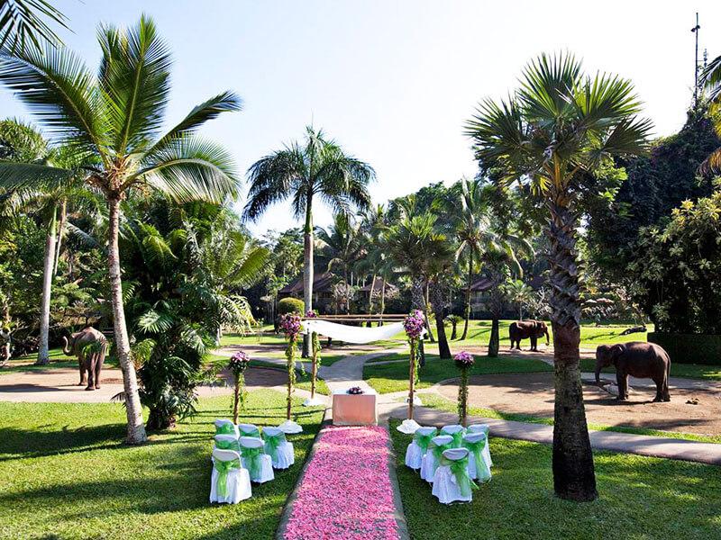 Wedding event 3 - Bali wedding & special event - Mason Adventures (Bali Adventure Tours)