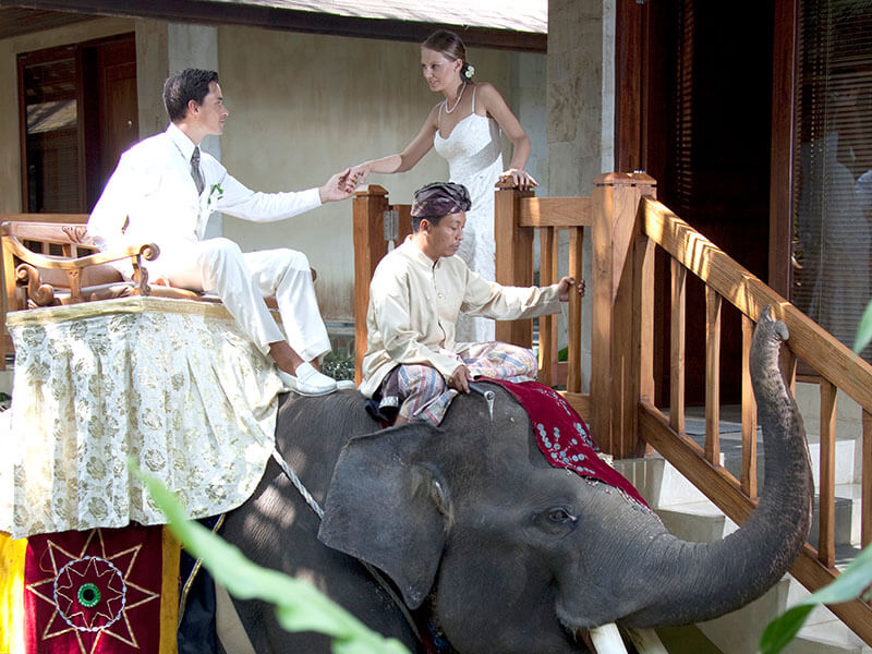 Wedding Event 4 - Bali wedding & special event - Mason Adventures (Bali Adventure Tours)