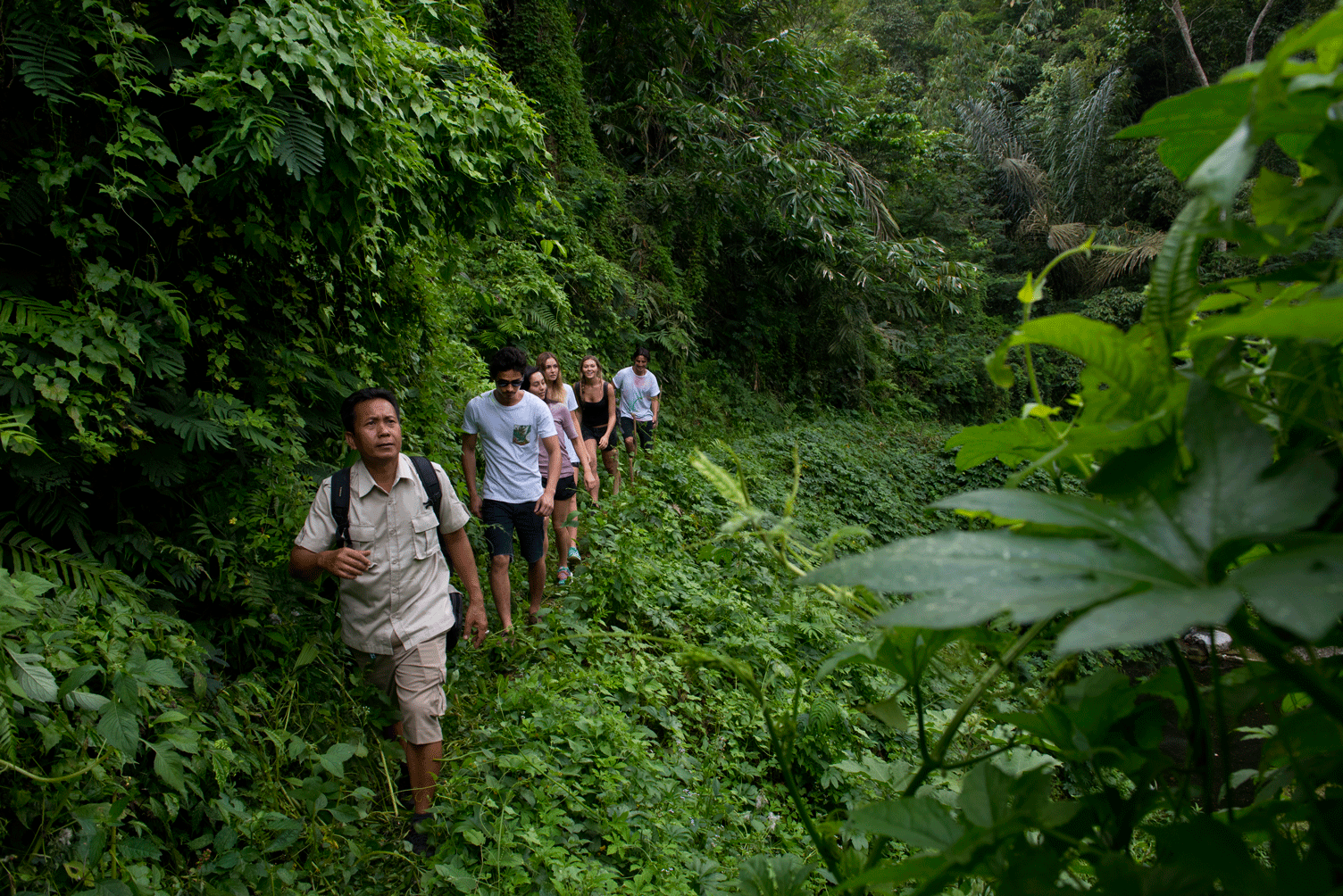 Off the Beaten Track for Some Tropical Trekking - Bali Trekking