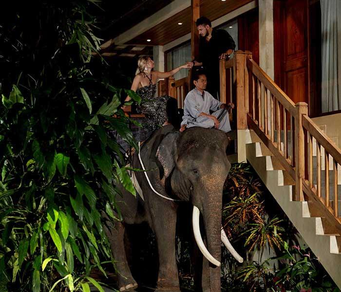 Bali night safari