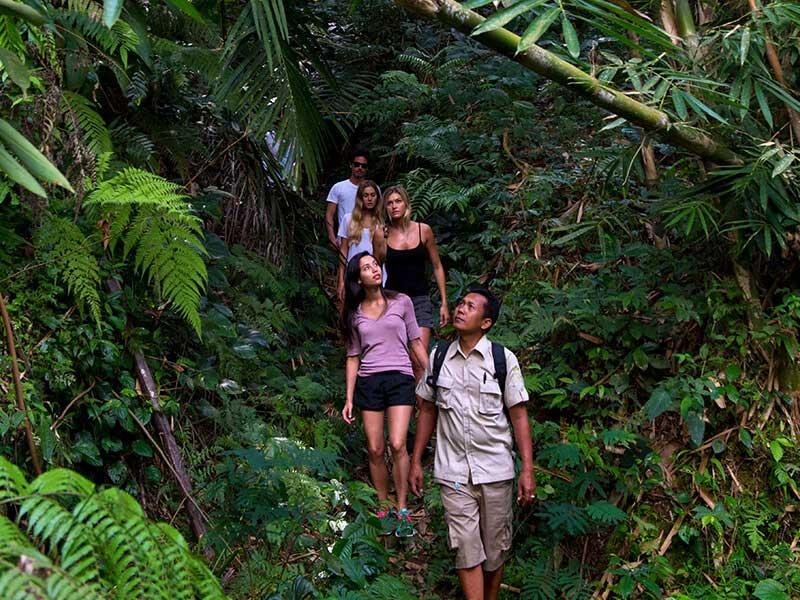 Best Bali Trekking & Hiking Tours | Mason Adventures