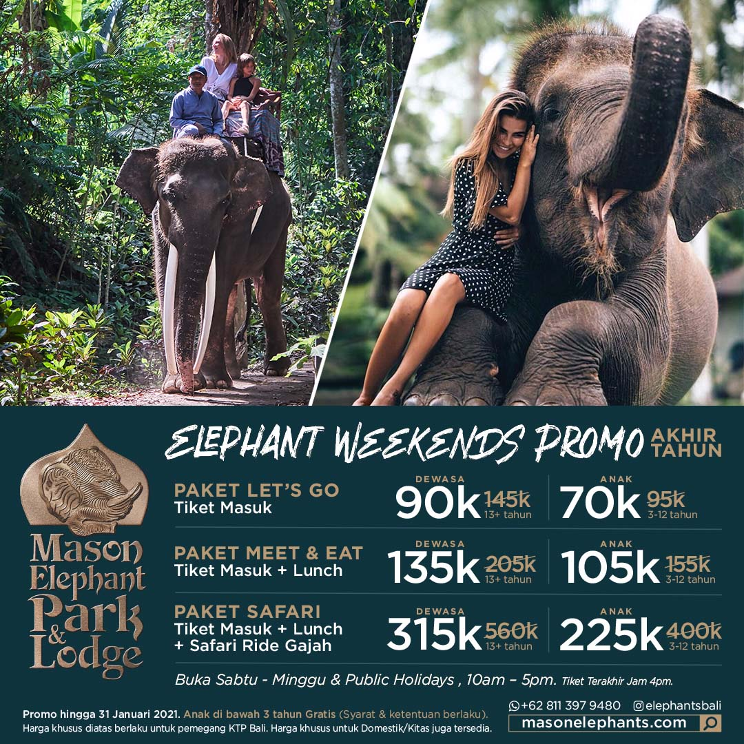 Mason Elephant Lodge Promotion